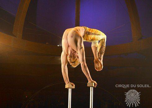 Цирк голый фото